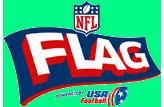 NFLFlagLogoSmall