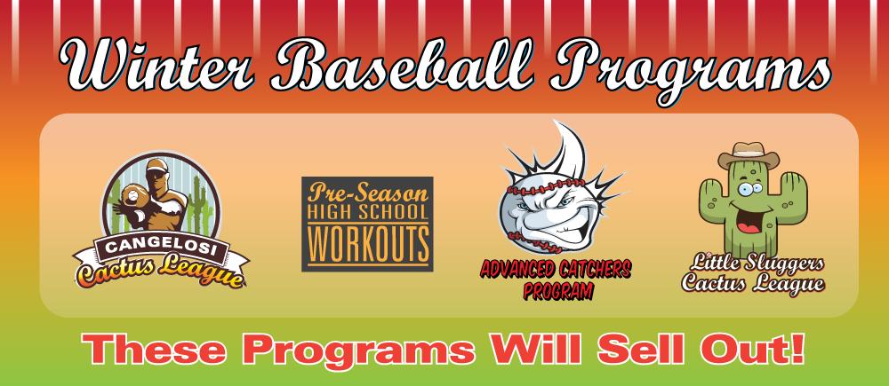 Baseball- Winter (Jan)  All Programs Slide