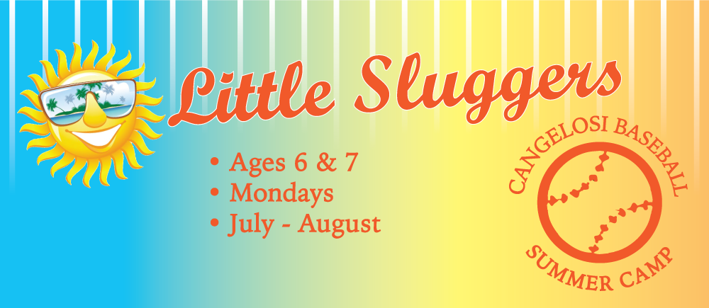 Little Sluggers Summer Baseball Camp